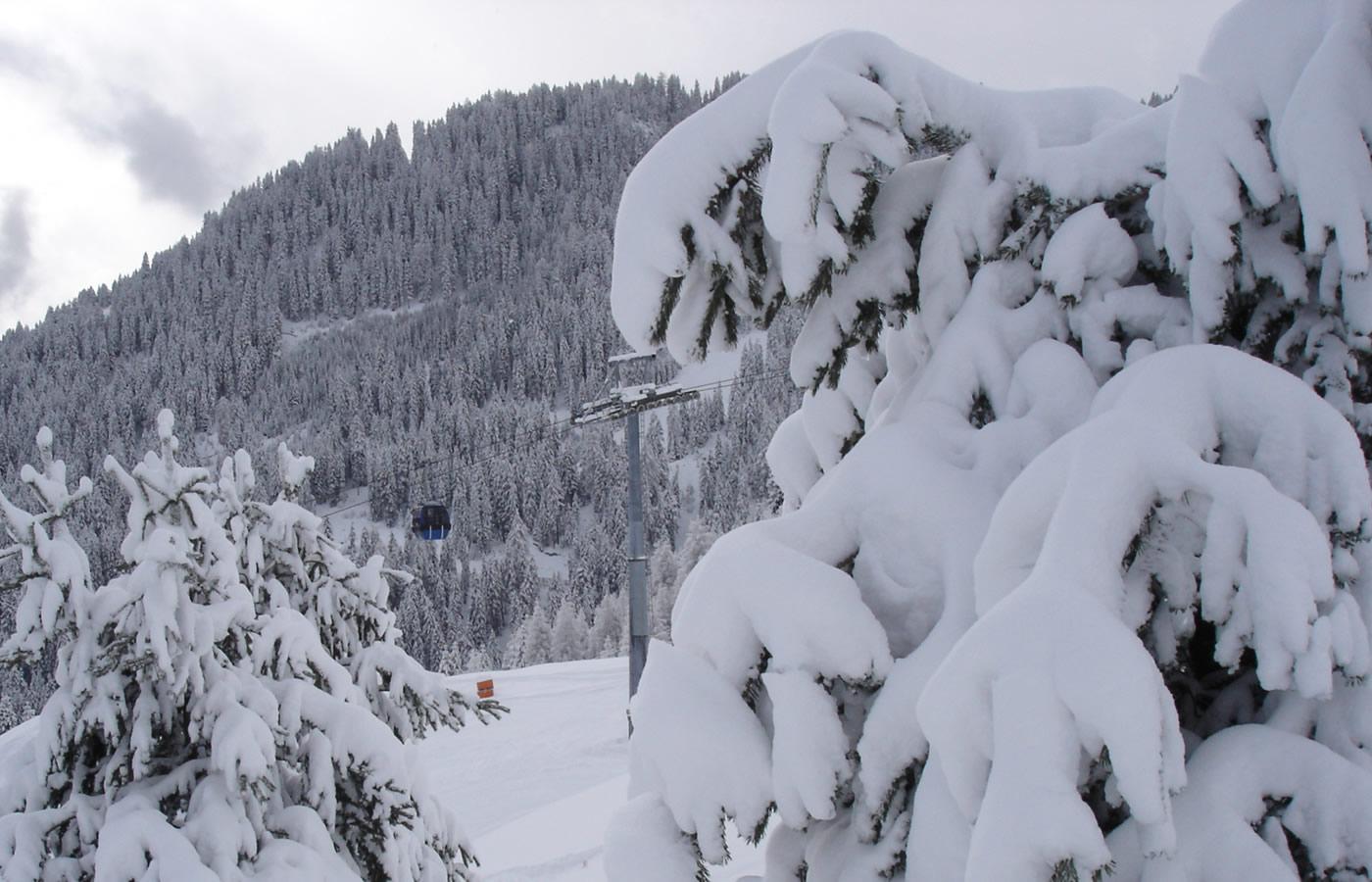 Natur_Tirol_Fiss_4
